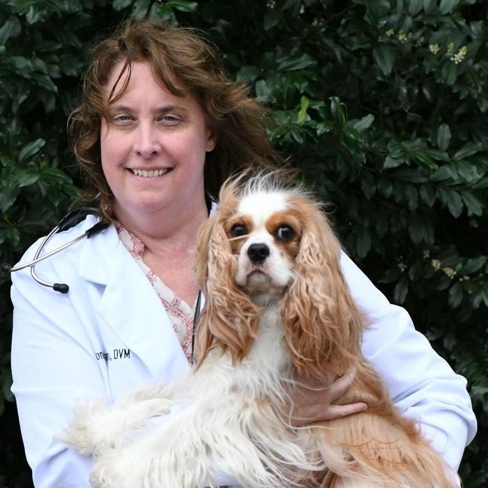 SONDRA BROWN, DVM </br> Veterinarian and Owner photo