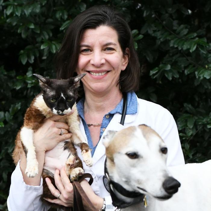 ALICIA SMITH, DVM</br> Associate Veterinarian  photo