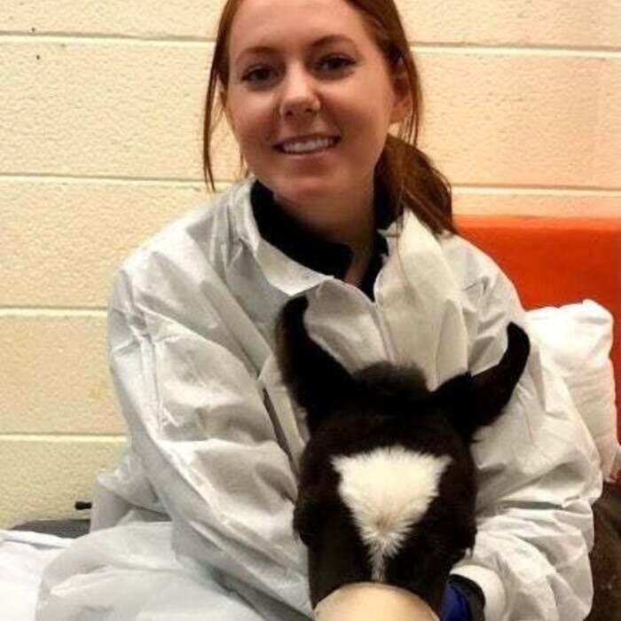 Erin H.</br> Veterinary Technician photo